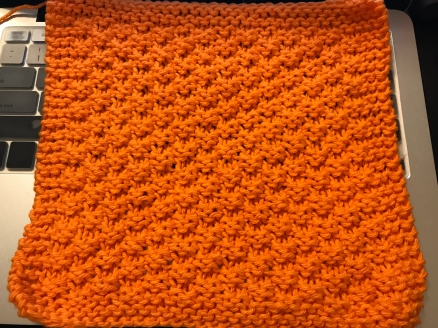 2 Stitch Check Dishcloth